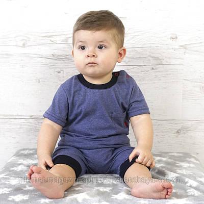 Комплект с брючками и футболкой для малышей, кулир пенье, размер  68, 74, 80, 86,  темно-синий