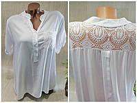 Женская блуза, 50/52 рр.,  № 107271
