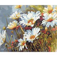 Картина по номерам Ромашковое поле, 40x50 см., Mariposa Q1439