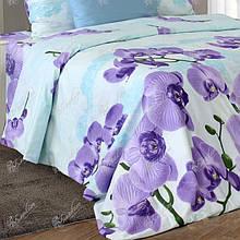Комплект постельного белья от украинского производителя бязь Орхидея Семейный