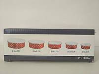 Набор контейнеров PETERHOF PH-12866 5 пр., фото 7