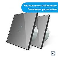 Комплект Сенсорных проходных выключателей Livolo Wi-Fi управление серый (VL-C701SZ/C701S-15), фото 1