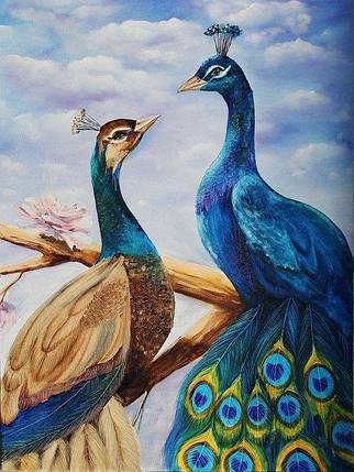 DM-299 Набор алмазной мозаики Влюбленные павлины, фото 2
