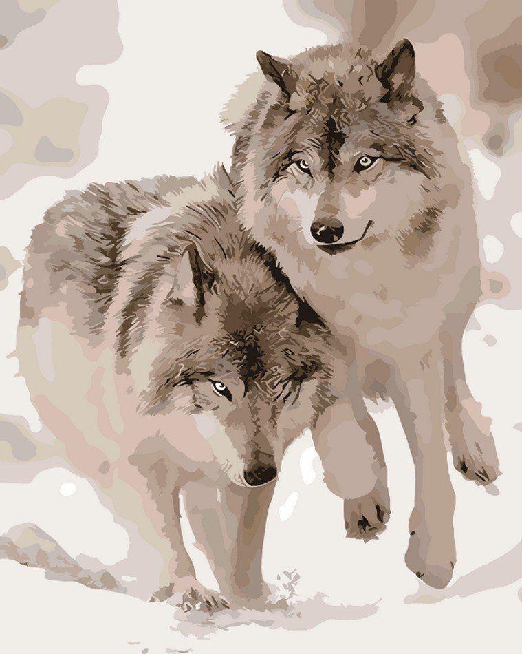 AS0062 Раскраска по номерам Снежные волки, В картонной коробке