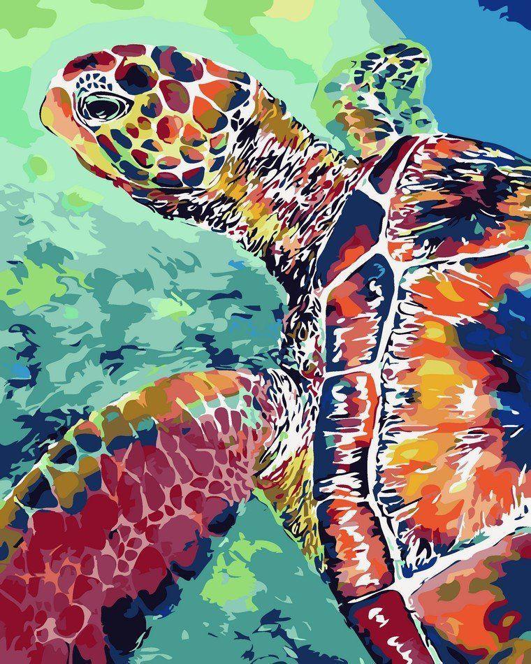 AS0076 Раскраска по номерам Радужная черепаха, В картонной коробке