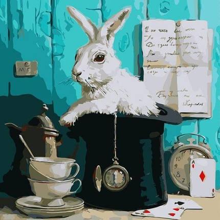 AS0323 Раскраска по номерам За белым кроликом, Без коробки, фото 2