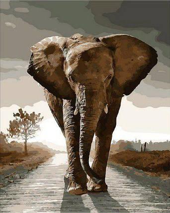 MR-Q1975 Раскраска по номерам Королевский слон, фото 2