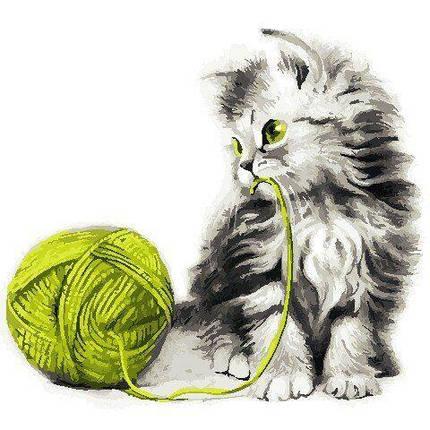 AS0806 Набор для рисования по номерам Котёнок с клубком, Без коробки, фото 2