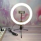 Кільцева лампа Ring Light 26 см+Міні штатив. Кільцева селфи-лампа 26 см на штативі, фото 2