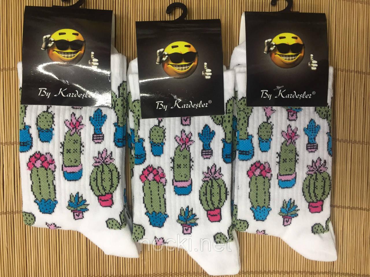 Шкарпетки з вишивкою Кактус