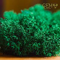 Стабілізований мох Green Ecco Лишайник ягель український смарагдовий 1 кг, фото 1