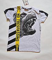 Детская футболка для мальчика 128-152 размеры, светло-серого цвета