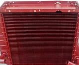 Радиатор водяного охлаждения ДТ-75 с дв. А-41 (3-х рядн.), фото 3