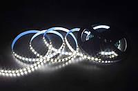 LED лента Skarlat LED LV-2835-120 6000K