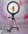 Кольцо светодиодное 26 см + Штатив-трипод 3110. Кольцевая лампа.Селфи кольцо 26 см, фото 5