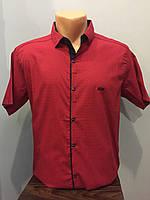 Мужская рубашка на кнопках с коротким рукавом S