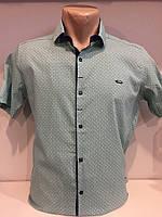Рубашка мужская с коротким рукавом S-2XL