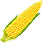 Удобряем кукурузу | Айдамин комплексный по листу | Айдамин Цинк | Айдамин Амино