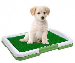 Туалеты для собак и кошек