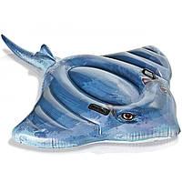 Детский надувной плотик Intex 57550 «Скат» (188х145 см) Stingray Ride-On