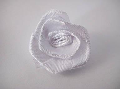 Квітка Троянда біла