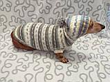 Одежда для собаки свитер с капюшоном,худи для собаки, фото 3