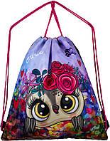Рюкзак для сменной обуви мешок на шнурках школьный для девочки Winner One M-43