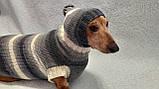 Одежда для собаки свитер с капюшоном,худи для собаки, фото 5