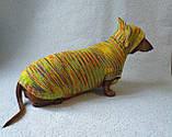Одежда для собаки свитер с капюшоном,худи для собаки, фото 2