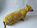 Одежда для собаки свитер с капюшоном,худи для собаки, фото 9