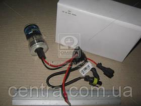 Ксенон лампа HID Н1 12v 4300К (пр-во Китай) лампа 4300К  DC