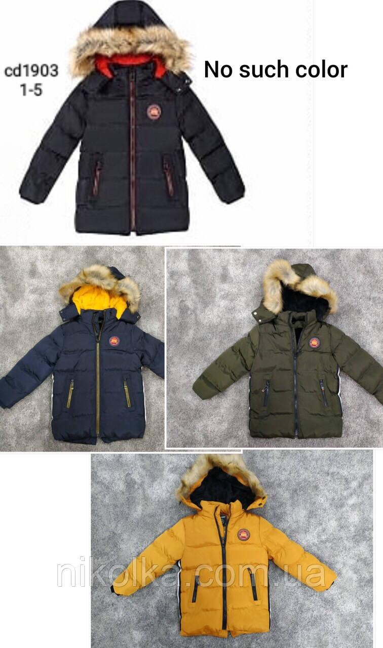 Куртка утепленная на мальчиков оптом, Setty Koop, 1-5 лет, арт. CD-1903