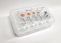 Пластиковый контейнер для хранения яиц на 12 шт. Plast art 14 х 22 х 7 см