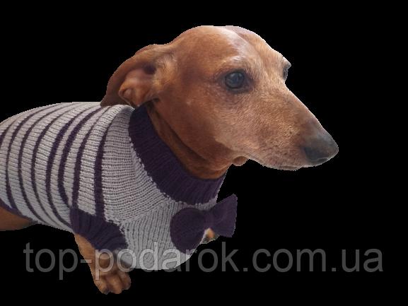 Свитер для собаки с бантиком,вязанная одежда для собаки
