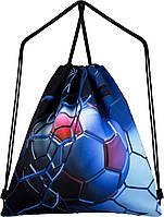 Рюкзак сумка для сменной обуви на шнурках спортивный школьный Winner One M-56