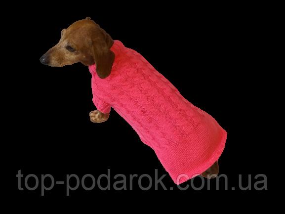 Розовый свитер для таксы или маленькой собаки