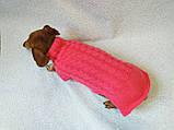 Розовый свитер для таксы или маленькой собаки, фото 2