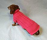 Розовый свитер для таксы или маленькой собаки, фото 5