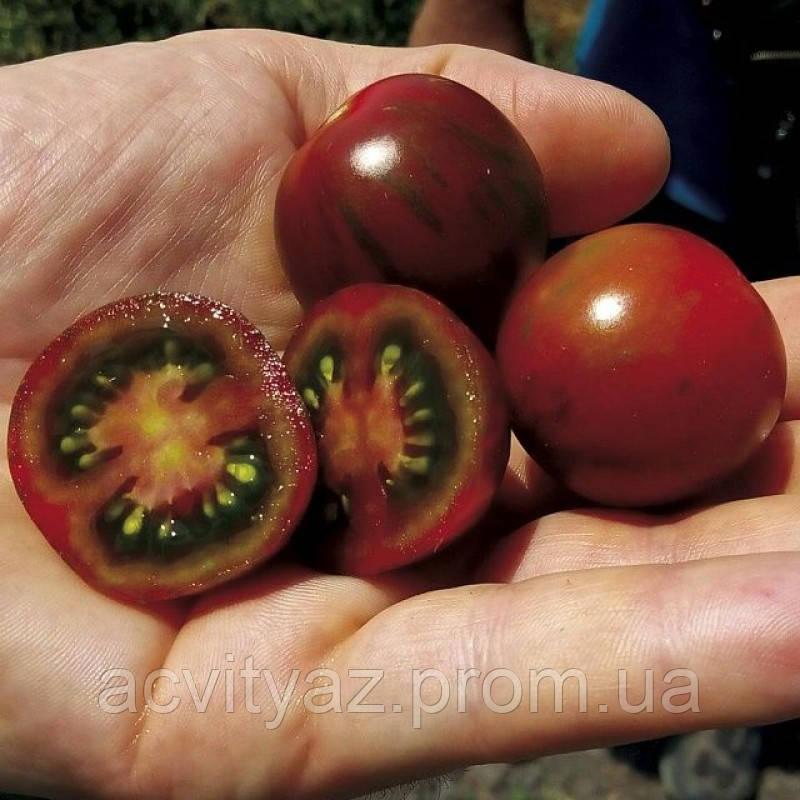 Семена томата Арика F1, 250 семян