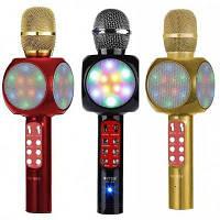 Караоке - микрофон DM Wster WS-1816