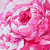 Набор для творчества «Картины по номерам– «Розовый пион 2» 30*30см.