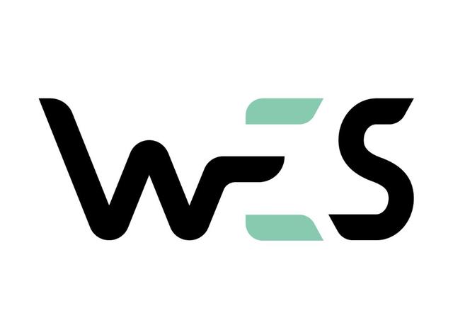 Солевая жидкость WES