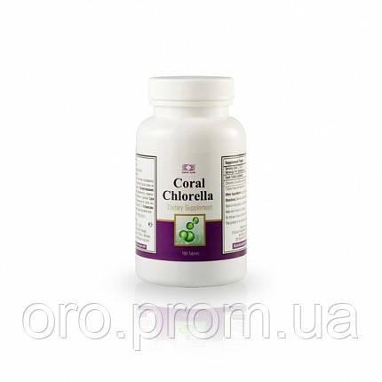Корал Хлорелла - источник белка, витаминов, минеральных веществ в легкоусвояемой форме.
