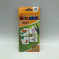 BIC набор цветных карандашей 12 цветов