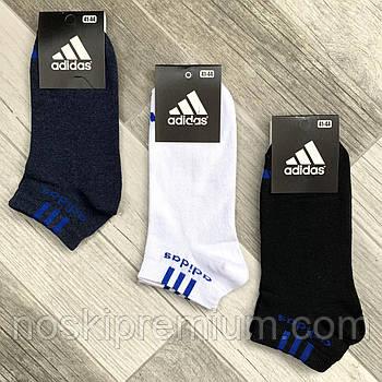 Носки мужские демисезонные хлопок спортивные Adidas, Athletic Sports, короткие, ассорти, 06207