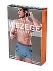 Трусы мужские Wezege HR-4095. Розница