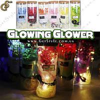 """Нічник Квітка в футлярі - """"Glowing Glover"""""""