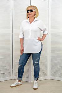 Блуза-рубашка белая - Модель Л438-5