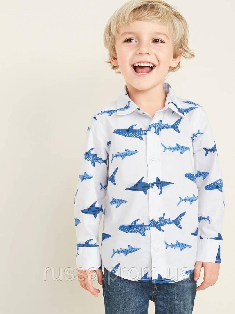 Поплиновая детская рубашка с акулами Олд Неви для мальчика