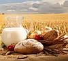 В Україні з'явиться нове свято – День фермера